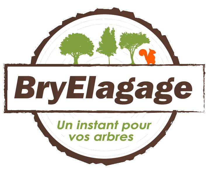 BryElagage